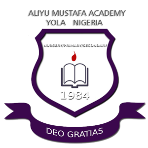 Aliyu-Mustapha-Academy-Logo1